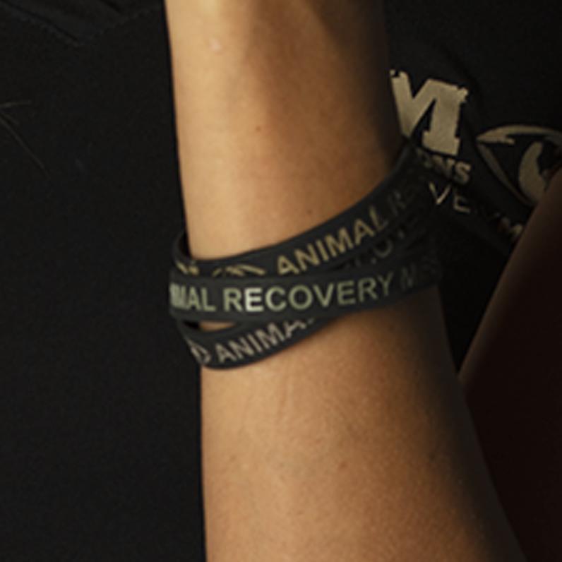 Arm Bracelet Investigations