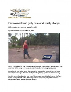 animal abuse news coverage
